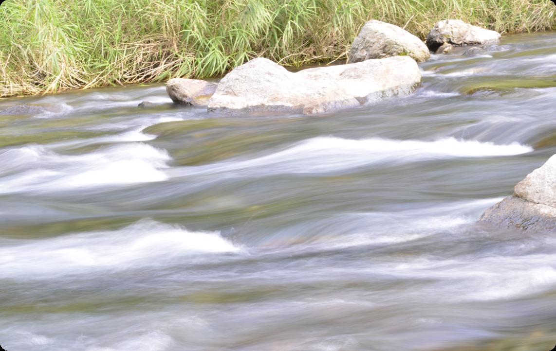 錦川水系の地下天然水